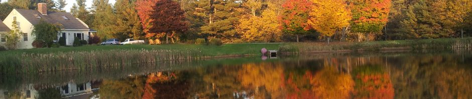 Fall foliage on trees reflected in water