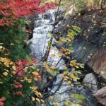 Yellow and red leaves in foreground, narrow river flowing between rocks in background