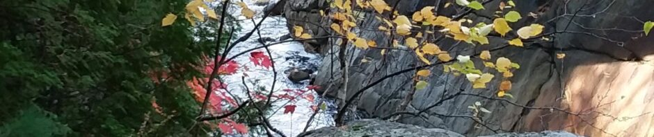 Red and yellow leaves overlooking waterfall